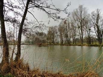 Petit étang sur terrain aménagé